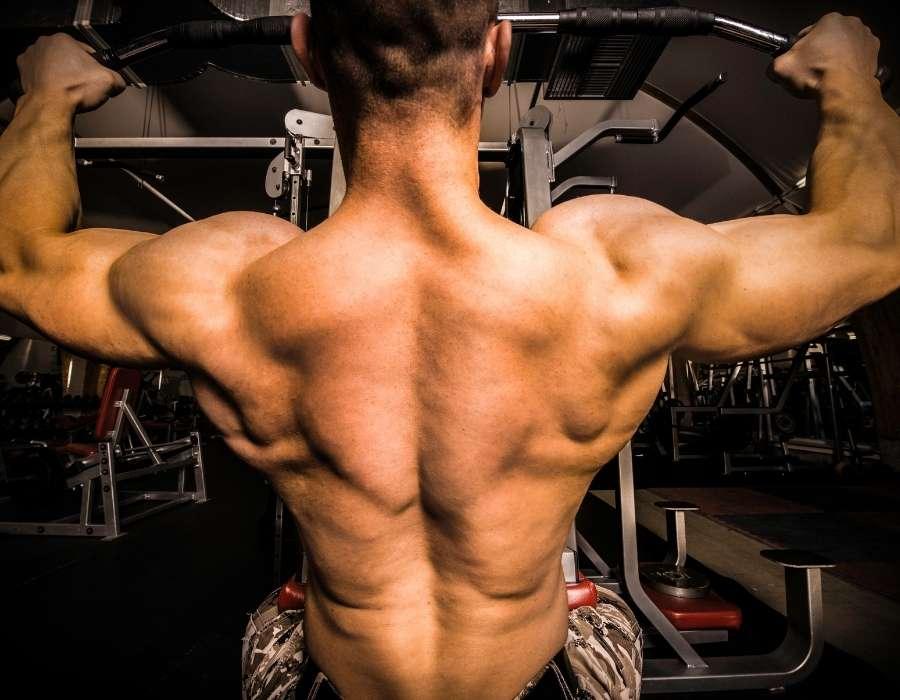 Upper Back training