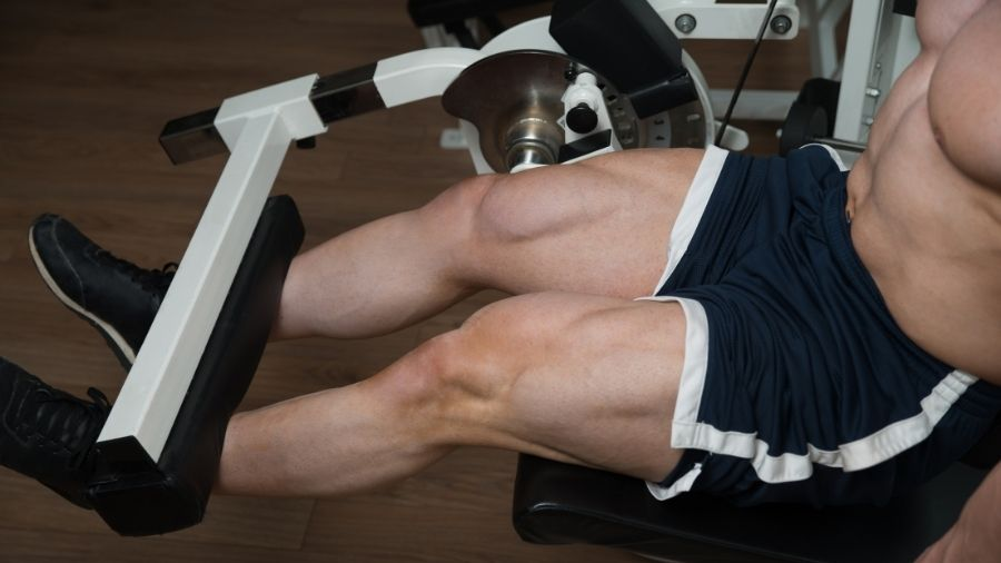 Can You Get Big Quads Without Squats