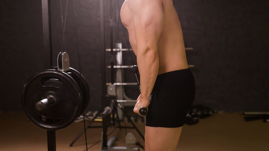 Long Head Triceps Exercises